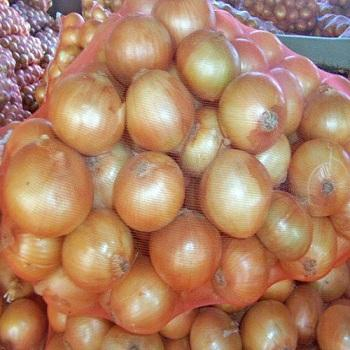 Fresh onions in bulk wholesale price super quality export to any country
