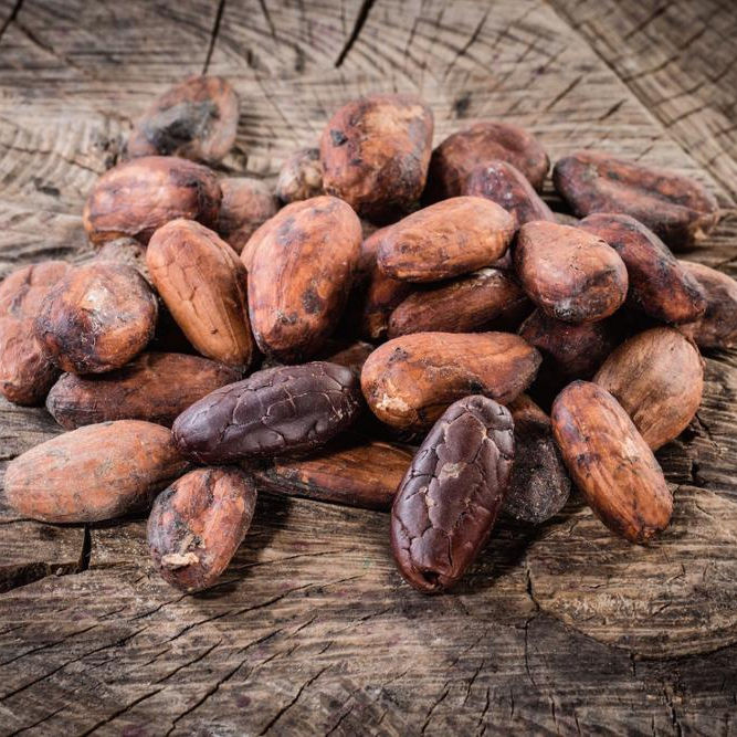 Best Grade Sun Dried Cocoa Beans
