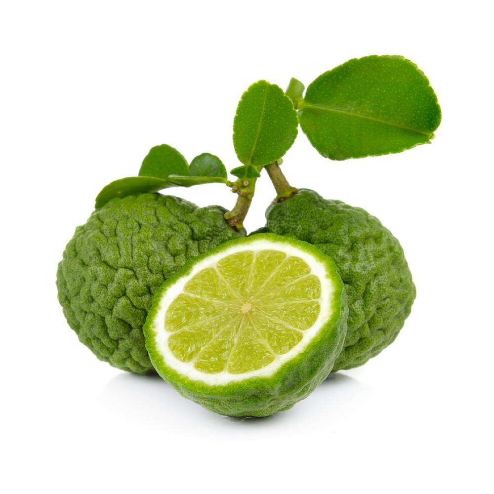 Beauty / Skin Care Bergamot Essential Oil Suppliers