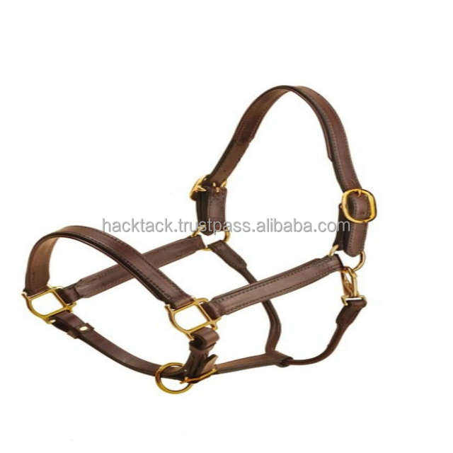 Horse Leather Halter Wholesale Price