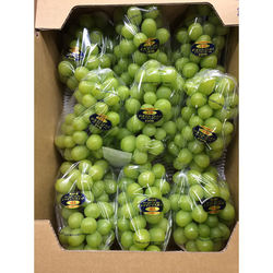 Superb delicious japanese fresh green grapes for wholesale