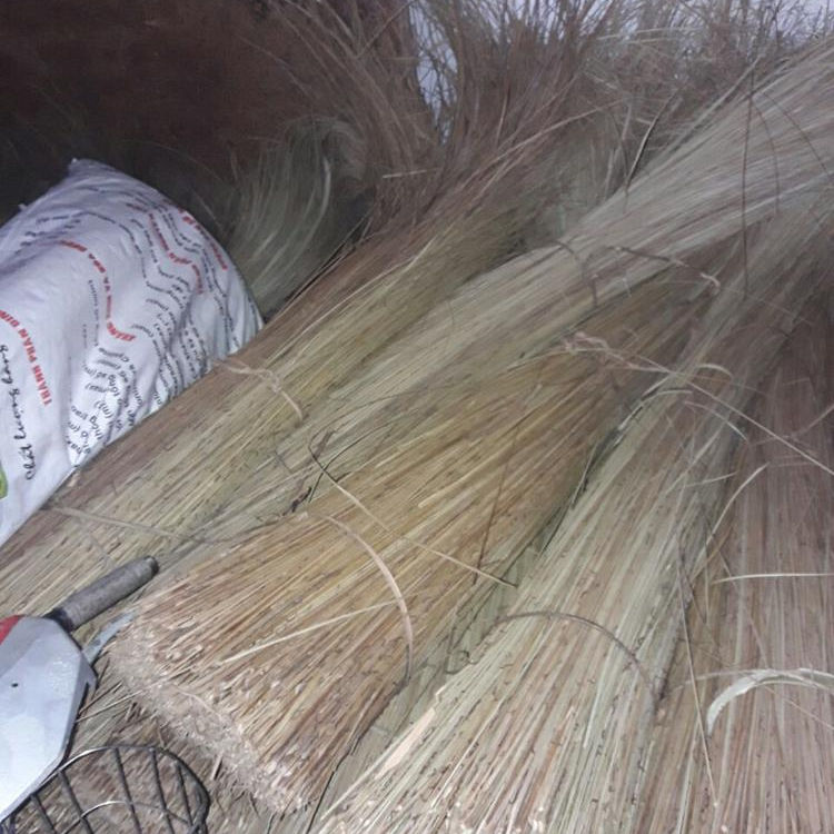 High quality Coconut Leaf stick for making Broom