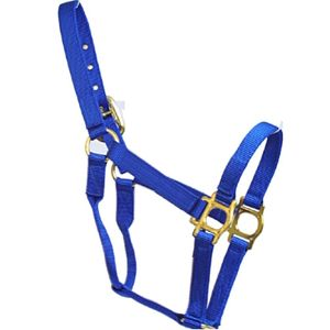 Halters for Horse