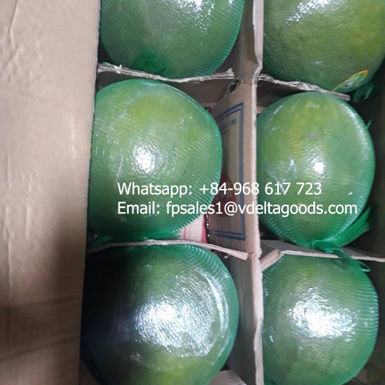 Fresh pomelo Grapefruit / Hot selling new crop cheap price