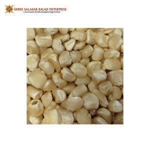 Best Price Wholesale Natural Nutritious White Maize Corn