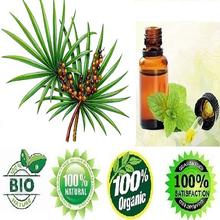 100% certified natural Micro encapsulated Saw Palmetto in bulk quantity from india