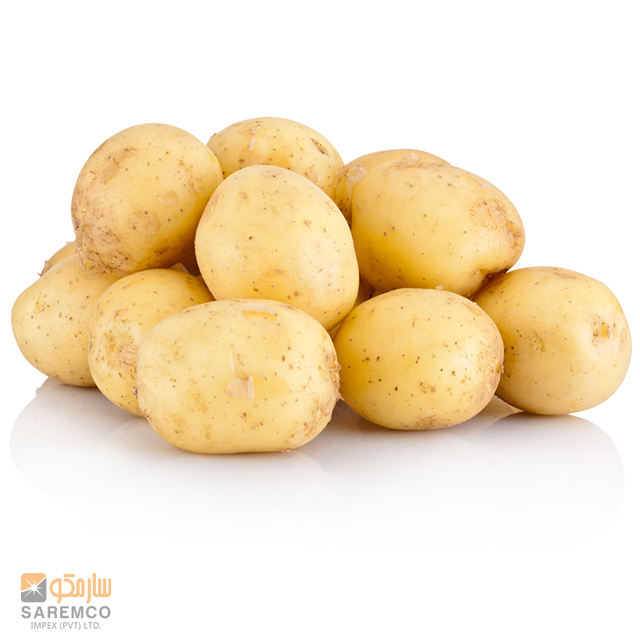 100% Exportable Pakistani Fresh Sante Potato