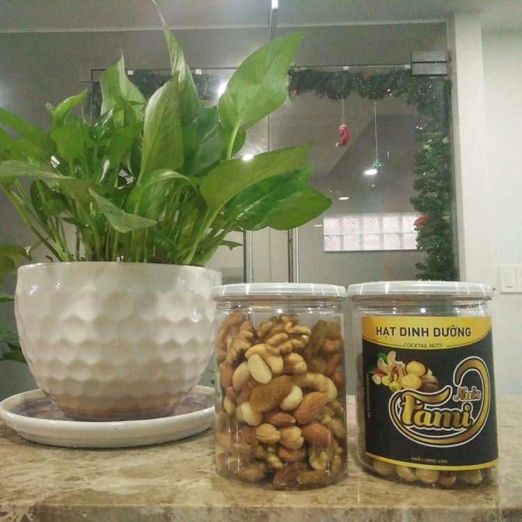 Mixed nuts/cooktail nuts/Nutrition nuts