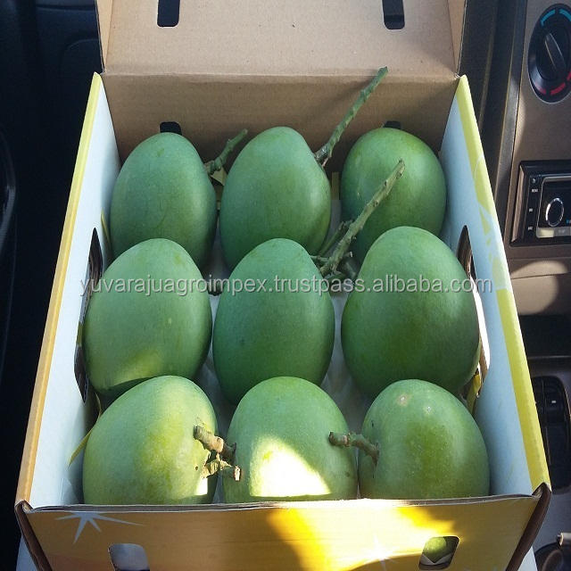 Indian Fresh Alphonso Mango Exporters In India
