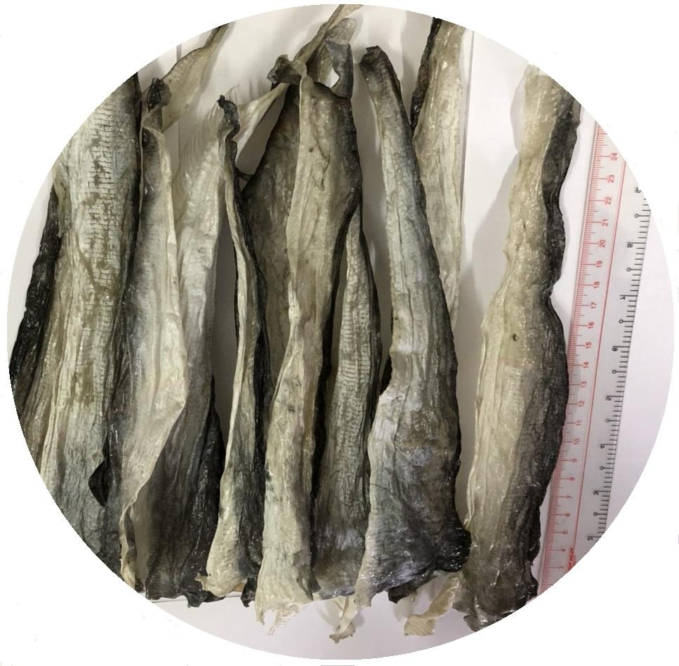 Hot sale Dried Fish Skin/ Frozen Fish Skin for Collagen industry/ Pangasius Fish Skin Whatsapp + 84 378 464 463 (Ms.Lucy)