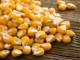 High quality Frozen Type Best Quality Yellow Corn/Maize