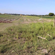 Piece of Land for sale in the Philippines