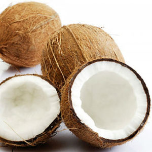 FRESH MATURE COCONUT FROM VIETNAM HIGH QUALITY