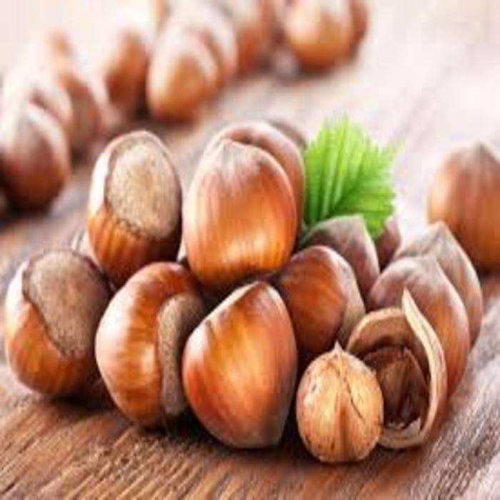 Raw Hazelnut Roasted Hazelnut in Bulk/Premium Quality Grade A Natural Hazelnut / Hazelnut Paste