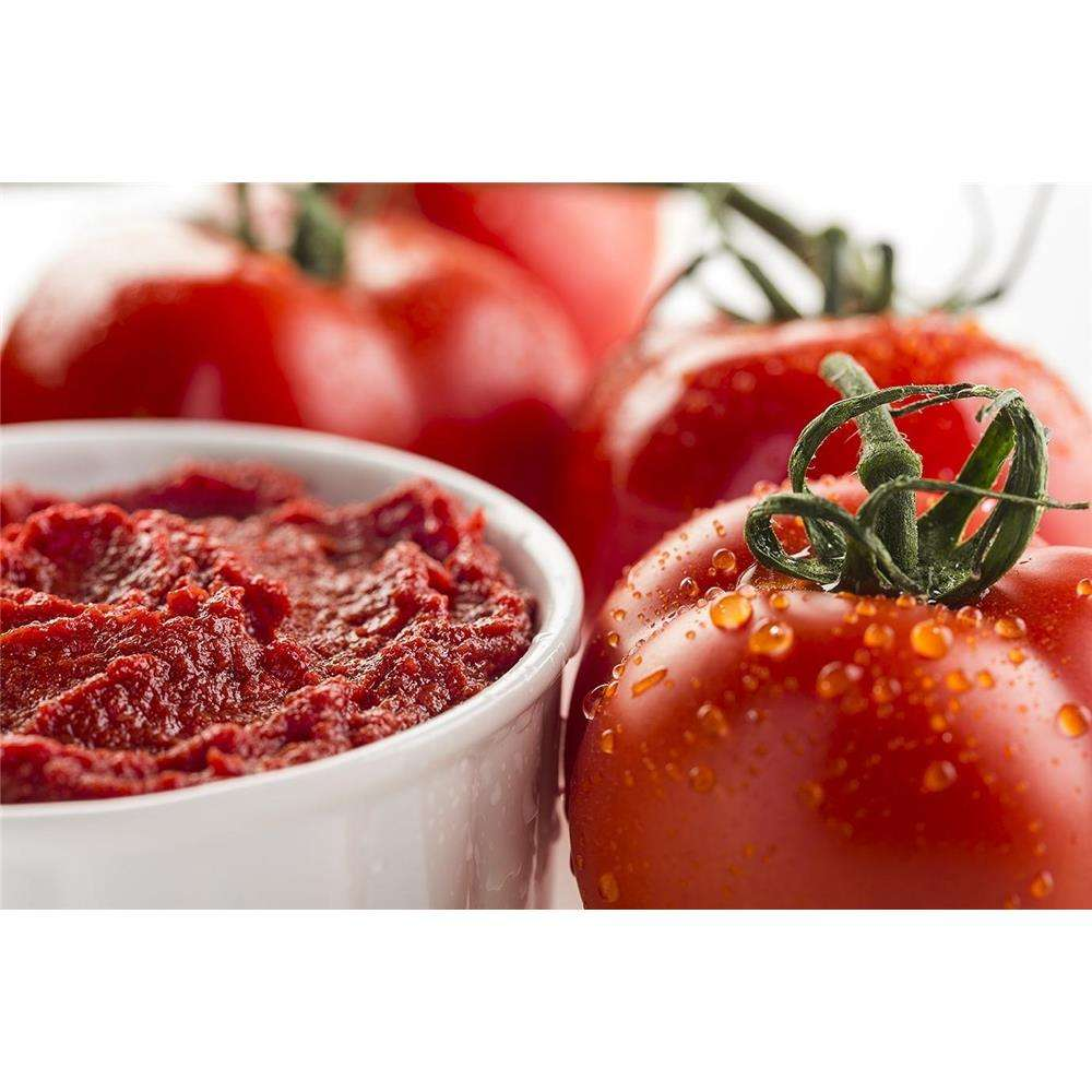 Make Organic Canned Tomato Paste