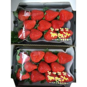 Fresh Sweet Wholesale Bulk Strawberries From Japan