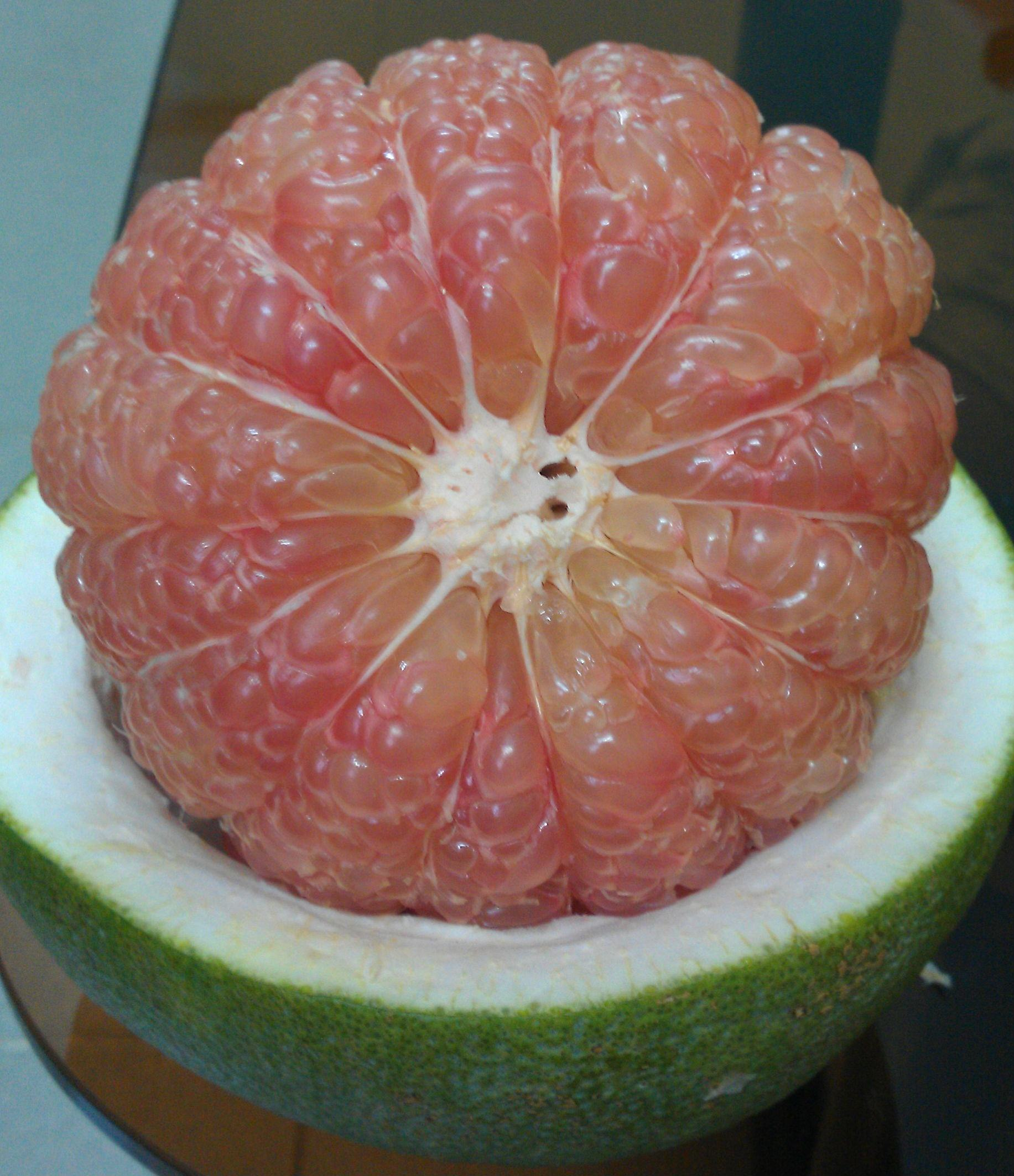 Fresh Pink Pomelo in Vietnam_CTD In't