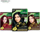 Hair Dye Box, Natural Henna Hair Color for Women at Low Price OEM | Private Label