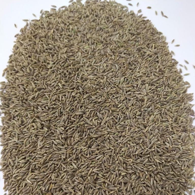 Best Sortex Quality Singapore 99% Purity Cumin seeds Jeera