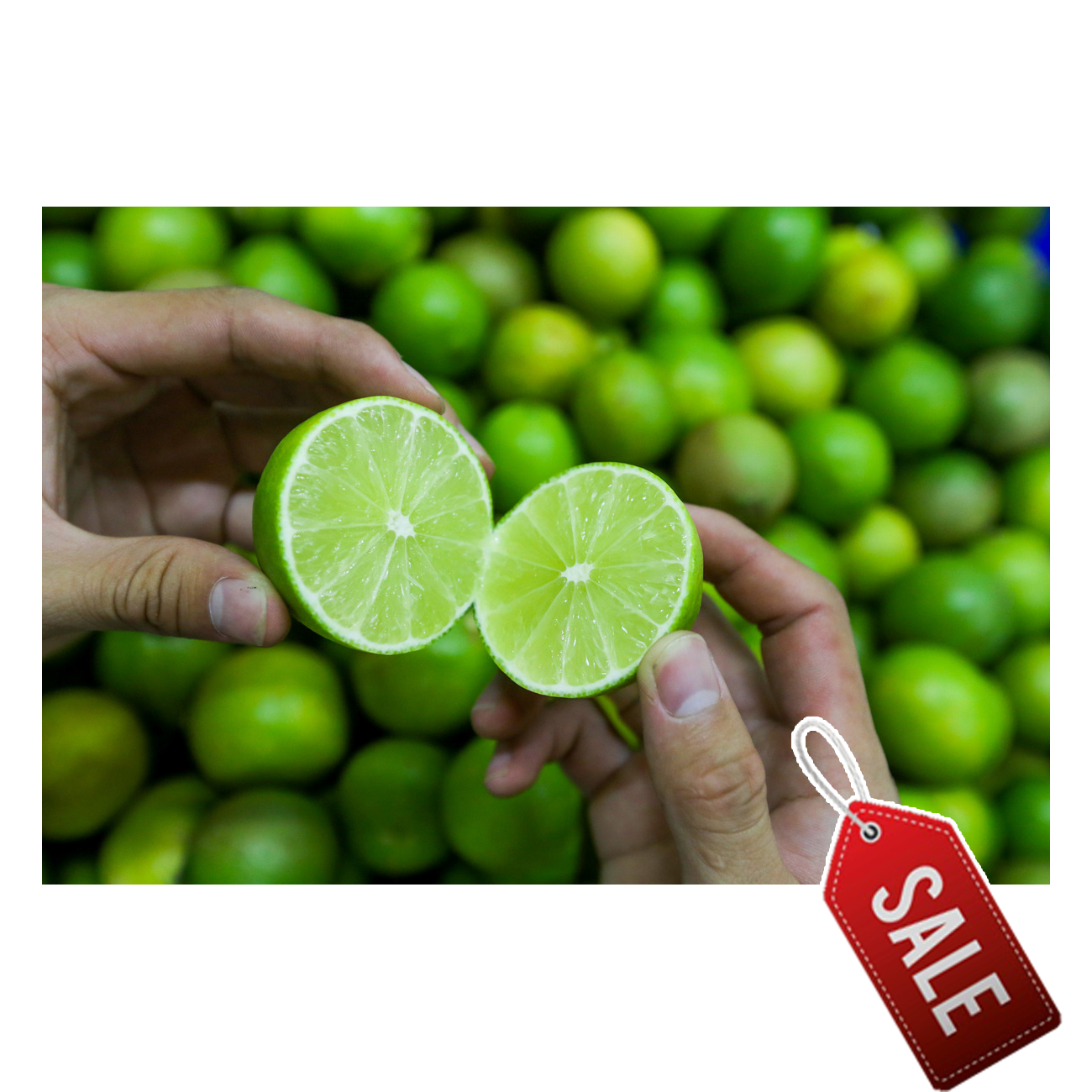 2021| 15% PRICE OFF Fresh Seedless Lime Lemon | Vietnam Agricultural Export Products | Cheap Price for Buy in Bulk | Inquiry Now