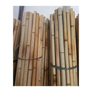 Tonkin Bamboo / Bamboo Canes / Bamboo Sticks For Bark Fence Heather Brushwood Moso Bamboo Big Bamboo Poles