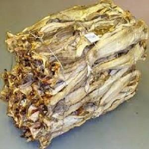 Dried StockFish / Frozen Stock Fish from Norway