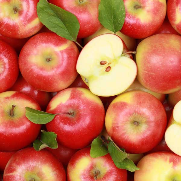 Fresh Royal Gala Apples, Golden Delicious Apples, Red Delicious Apples For sale