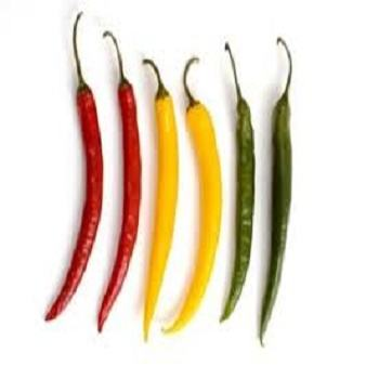 Dry Green Hot Chili Powder Peppers Dried Wholesale Price