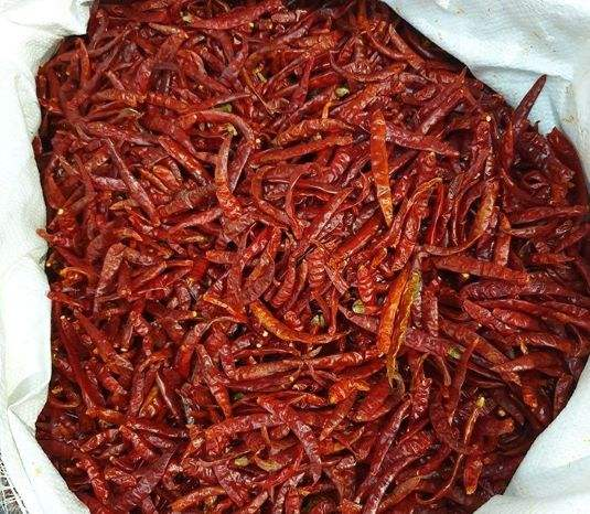Dried Chilli Pepper Product of Thailand