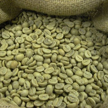 Robusta and Arabic Coffee Beans for Best Prices
