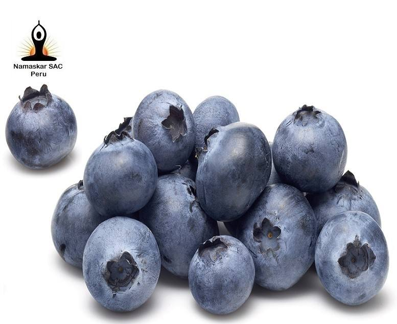 IQF Blueberries Grade-A from PERU for Wholesale