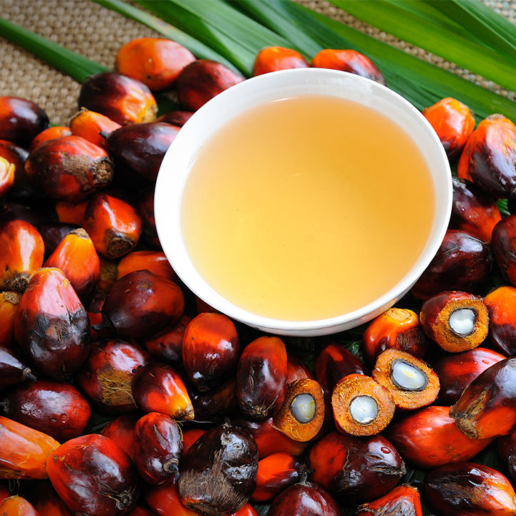 Refined Palm Oil / Palm Cooking Oil / Palm Vegetable Oil In Bulk Premium Quality