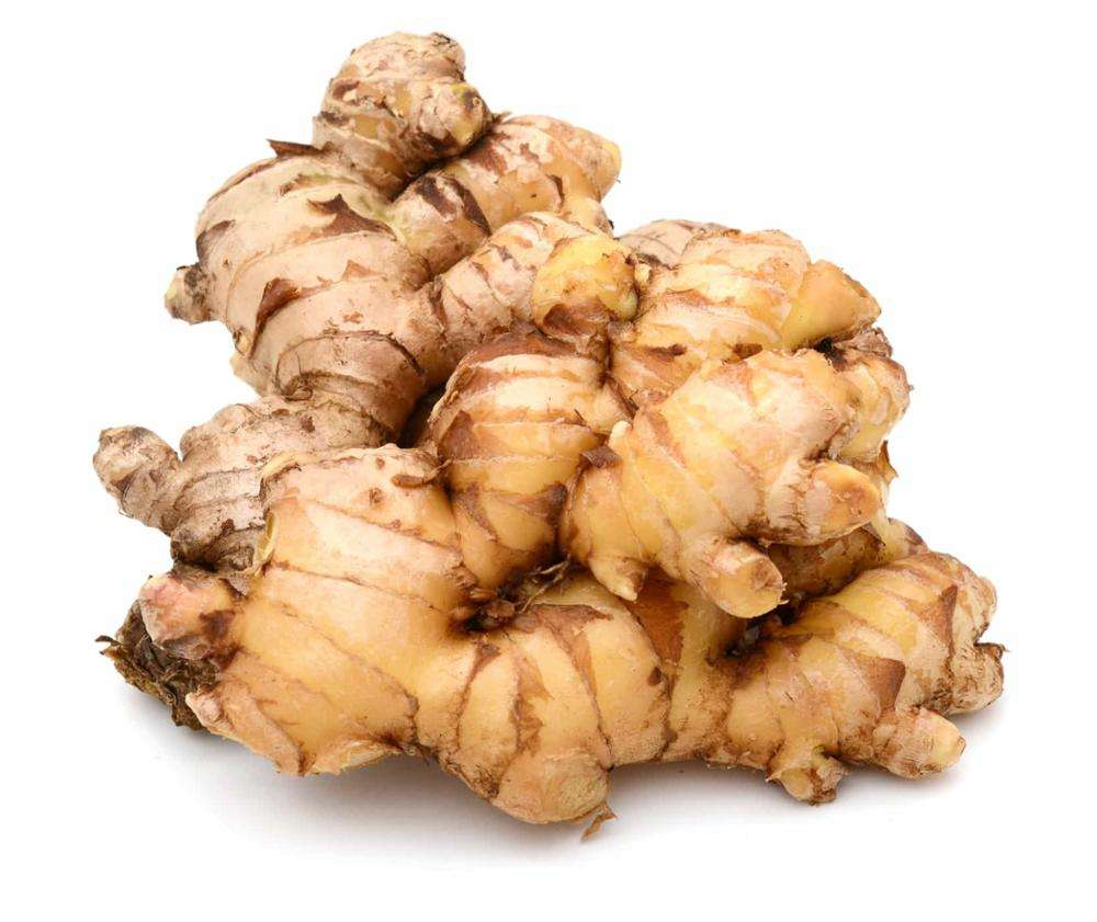 Wholesale ginger fresh
