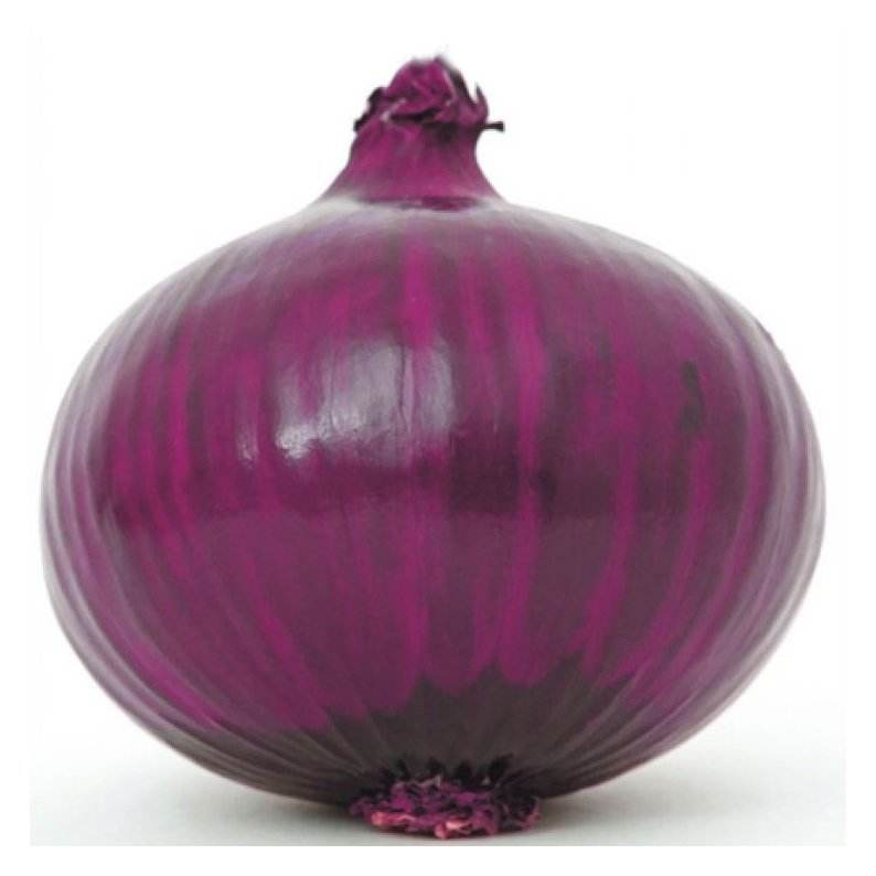 Fresh Red Onion Turkey 50mm size fresh red Turkish onions