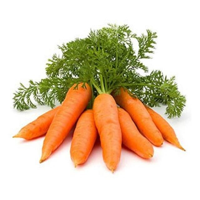 Hot Selling Vegetable New Crop sell sell fresh carrot