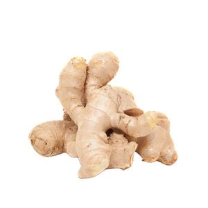 China fresh organic ginger wholesale supplier