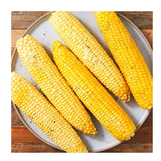 Dried Yellow Corn / Sweet Dried Yellow Corn Top Quality