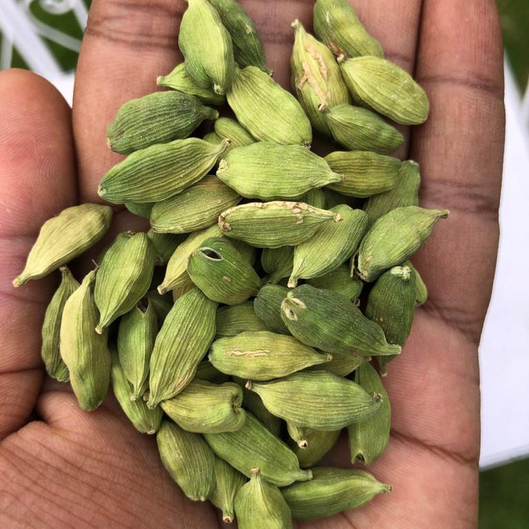 Indian Green Cardamom 8mm bold export quality