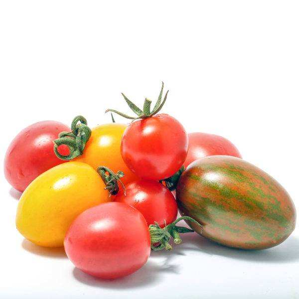 Best Quality Fresh Chocolate Tomato