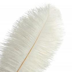 Decoration Colored Bulk Ostrich Feathers