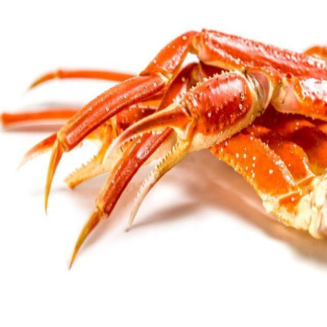 Fresh or cooked frozen chionoecetes opilio snow crab claws