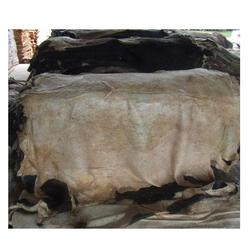 Salted & Dry Salted Donkey Hides Top quality best Price Bulk Quantity available Wholesale dealer