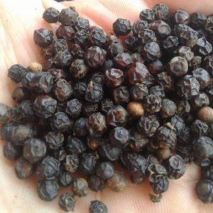 VIETNAM BLACK PEPPER / +84984418844 whatsapp