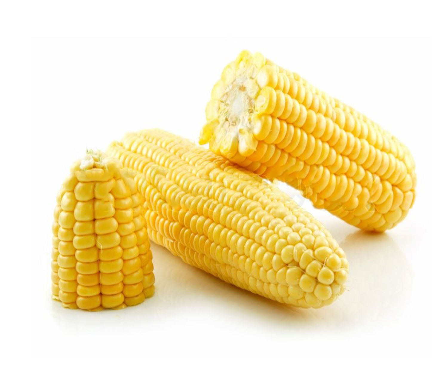 high quality wholesale yellow and white corn