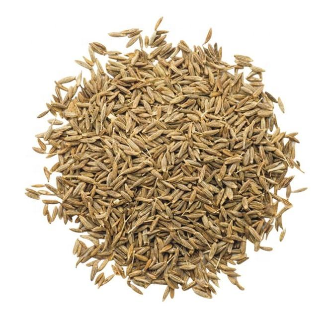 Top Quality Good Price Cumin Seeds for Sale supplier wholesaler exporter India