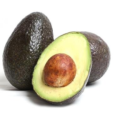 100% Fresh Avocado /Avocado Best Price and Quality