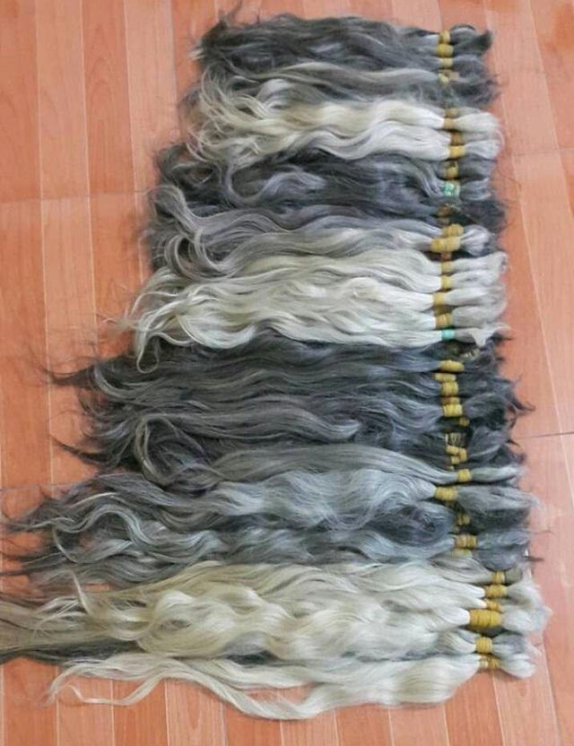 humanhair extention natural grey hair one tail one head cut from vietnamese women, no chemical, no dyed, silk, thick