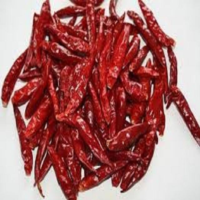 Hot Spicy Dried Red Chilies Manufacturers