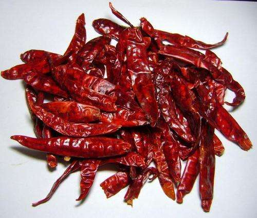 DRIED CHILI WITH HIGH QUALITY & SPECIAL PRICE