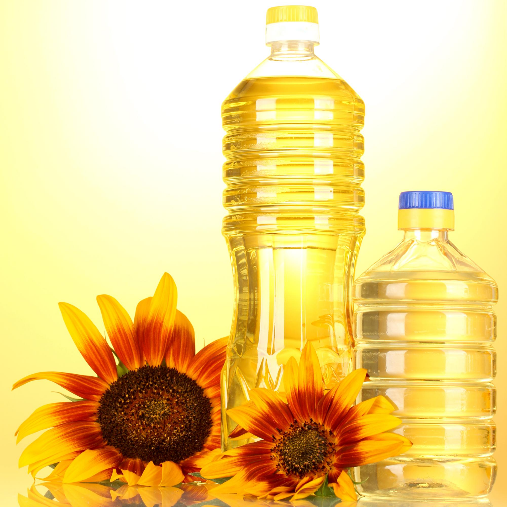 Sunflower oil  Refined bottle
